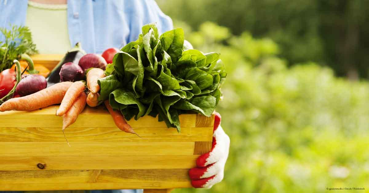 Busting The Organic Food Myth, Organic Food, Fitness Tips, Fitness Advice, Fitnessmotivation, Motivation, Fitpeople, Fitnesslovers