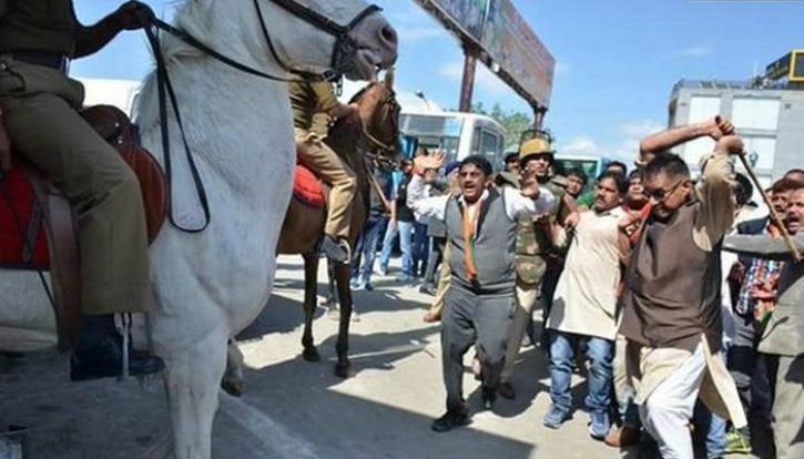 Shaktiman, Shaktiman Horse, PETA, Brave Animal